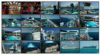 Cruise Picts Posted