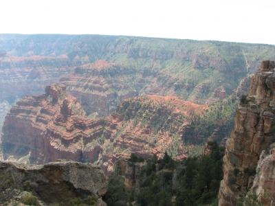 Grand Canyon, Grand Vistas, Grandchildren, oh my...